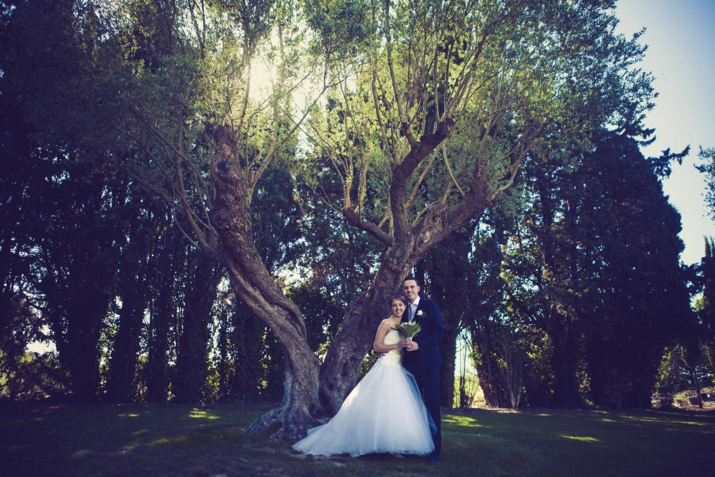 Mariés arbre